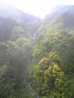 徳島県貞光川水系の鳴滝2