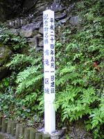 徳島県貞光川水系の鳴滝5