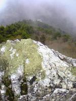 徳島県丸笹山頂上からの眺望4