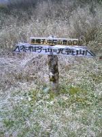 徳島県丸笹山の素晴らしい道2