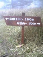 徳島県丸笹山の素晴らしい道1