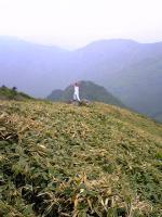 伊予富士登山道11