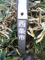 伊予富士登山道8