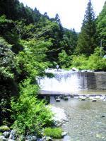 剣山展望の塔ノ丸登山口4