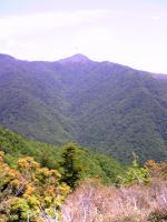 素晴らしいブナ林と笹原の道4