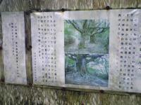 高知県大座礼山登山口への道5