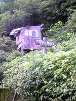 高知県大座礼山登山口への道4