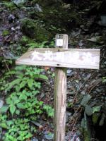 高知県大座礼山登山道3