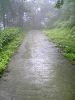 徳島県西祖谷中津山登山の車道3