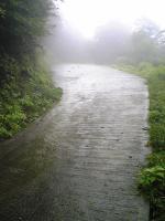 徳島県西祖谷中津山登山の車道4