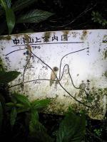 徳島県西祖谷中津山登山の車道2
