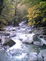 1西熊渓谷に架かる吊橋3