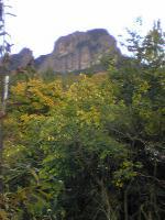 1火野正平さんの訪れた丘2