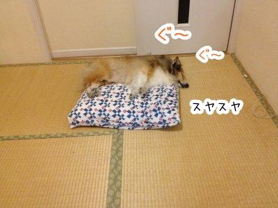 junomakura.jpg