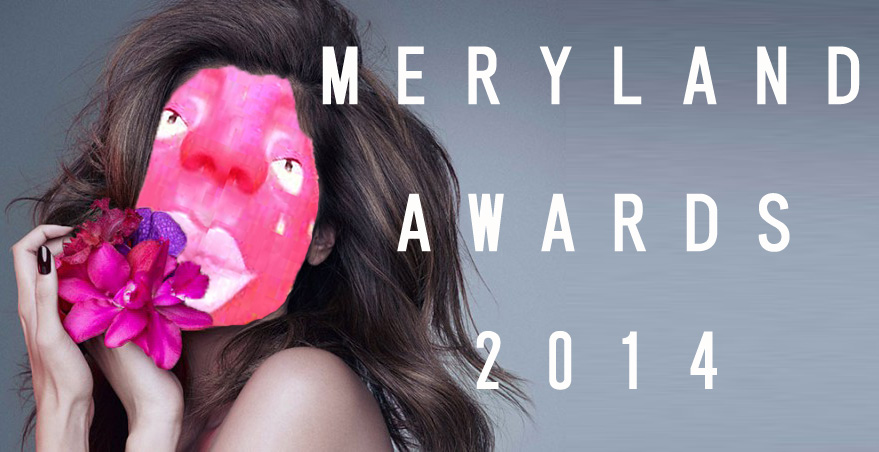 merylandawards2014