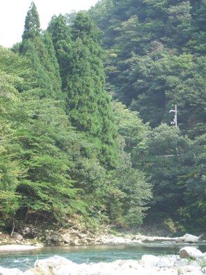 由良川その2