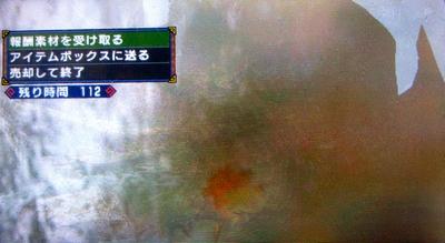 SB031.jpg