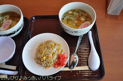 fujigoko201304003.jpg