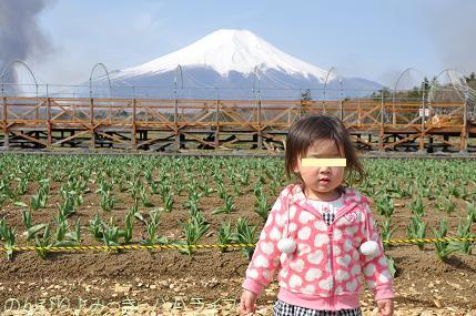 fujigoko201304006.jpg