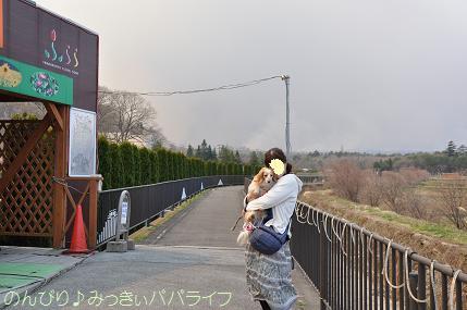 fujigoko201304013.jpg