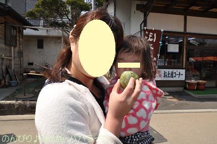 fujigoko201304014.jpg