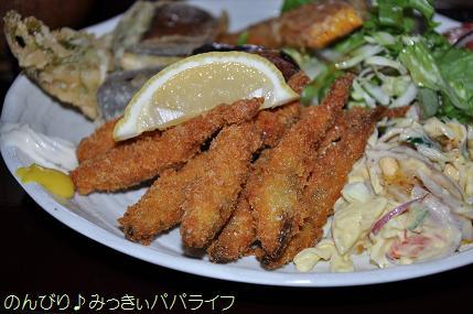 fujigoko201304021.jpg