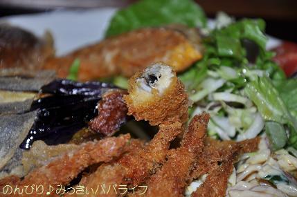 fujigoko201304022.jpg