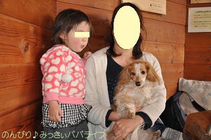 fujigoko201304023.jpg