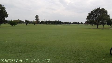 omiyakokusai.jpg