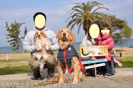tateyama201302038.jpg