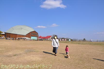 tateyama201302048.jpg