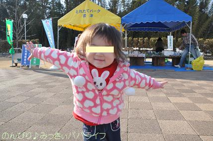 tateyama201302052.jpg