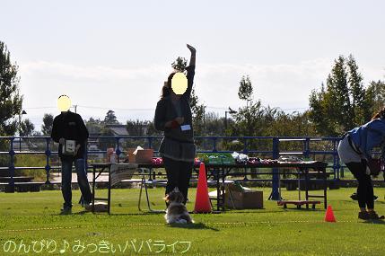 wanwansportsfes201310.jpg