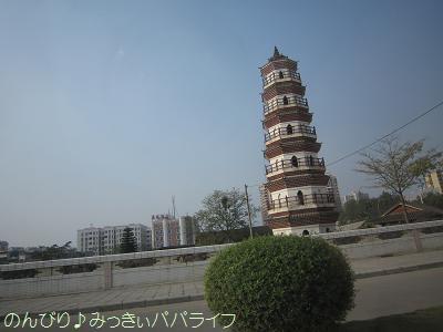 zhaoqing017.jpg