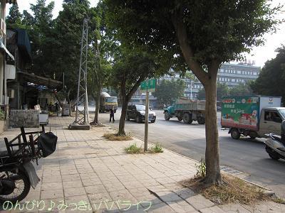 zhaoqing019.jpg