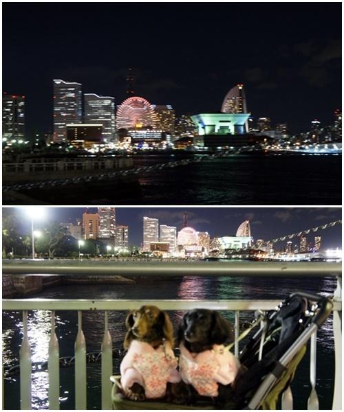 20141207yokohama1.jpg