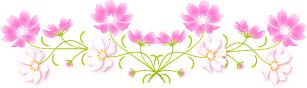 cosumosu100831-li1.png