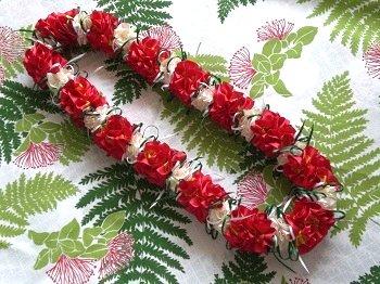 Hibiscus1_20130512141854.jpg