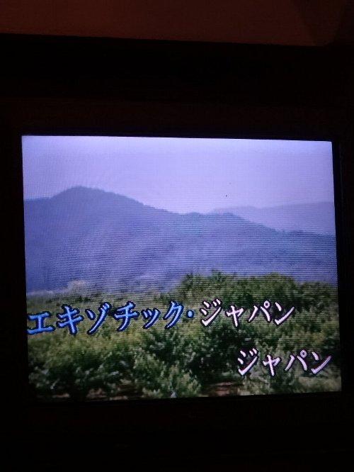 2013年10月12日中華魔女会&カラオケ 037