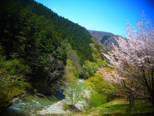 2013.5.10 フェイントボムと温泉 9