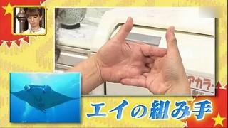 s-itabashiki5.jpg