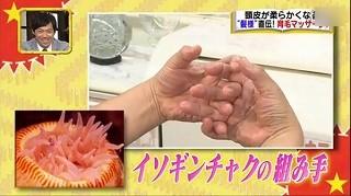 s-itabashiki8.jpg