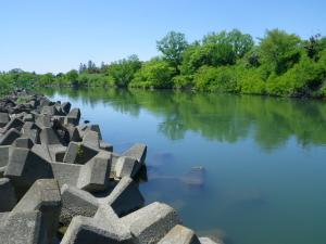 荒川 開平橋上流