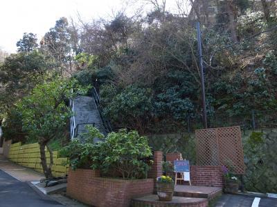 樹ガーデン6