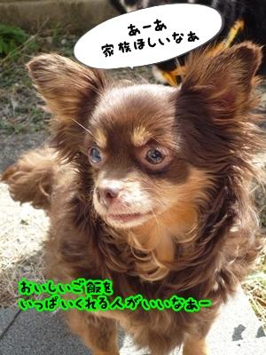 ちくP1390181