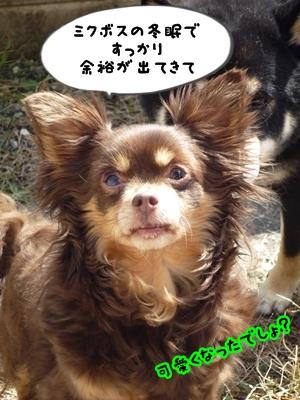 ちくP1390179