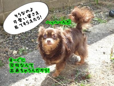 ちくP1390145