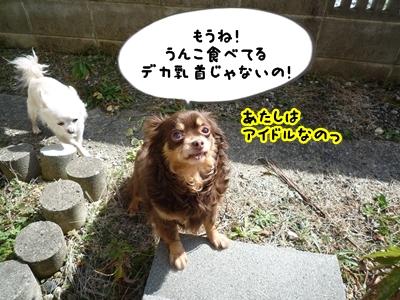 ちくP1390114
