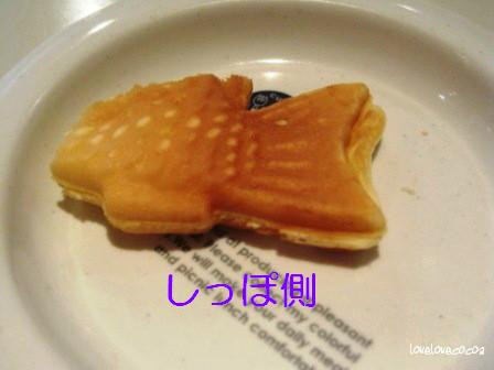 IMG_4894-cocoa_20131002111452f59.jpg