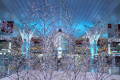 羽田空港に氷を使わないスケートリンクが!